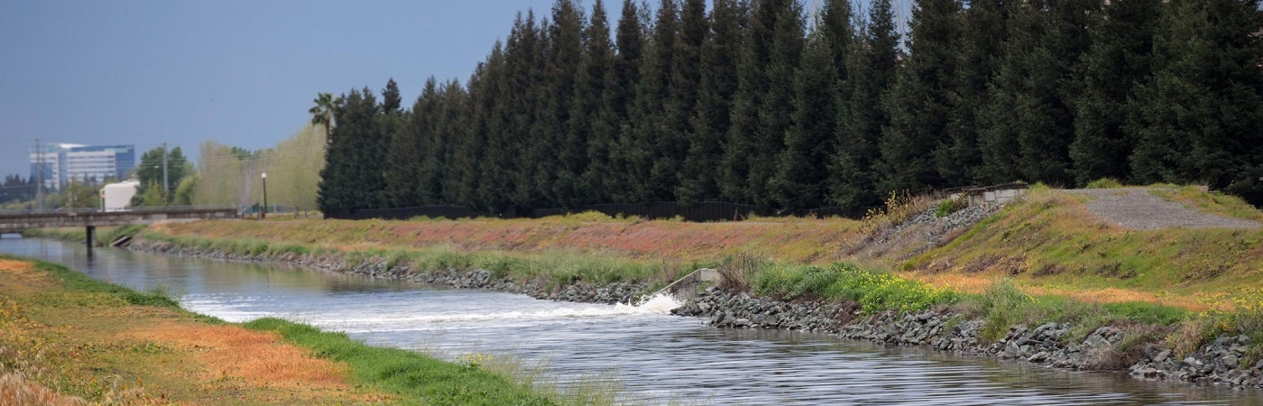 Creek | Central Valley Hydrology Study