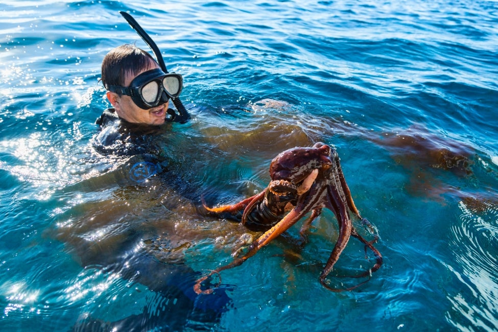 Marine Biology Careers