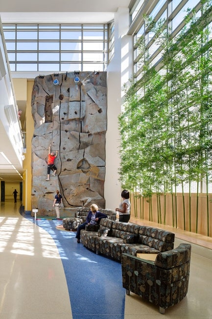 James A. Haley Veterans Hospital Polytrauma Expansion - rehabclimbingwall