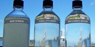 Bottles containing raw sewage final effluent and reclaimed water