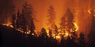 Forest Fire | Building Resilient Utilities: Protective and Preparing Your Infrastructure