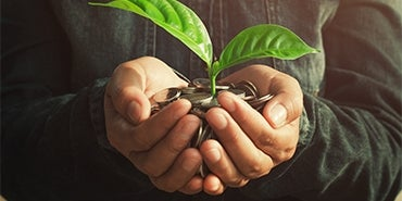 Hands Holding Money and Growing a Small Plant | Water Economics