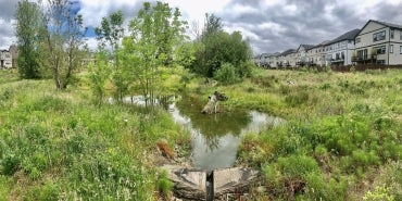 Bethany Creek Enhancement Project | Benefits of Innovative Stormwater Approach Can Include Lower Costs, Less Effort