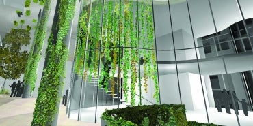 gardens in the sky sustainability