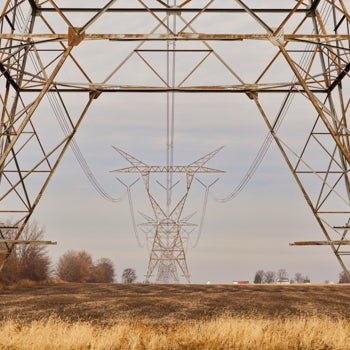 view through transmission line legs
